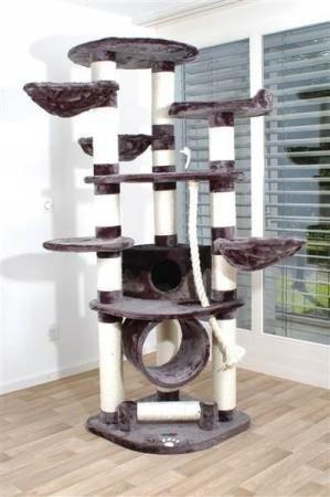 arbre à chat grand chat