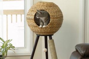 un arbre à chat design
