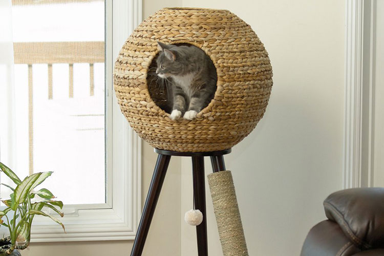 un arbre à chat design