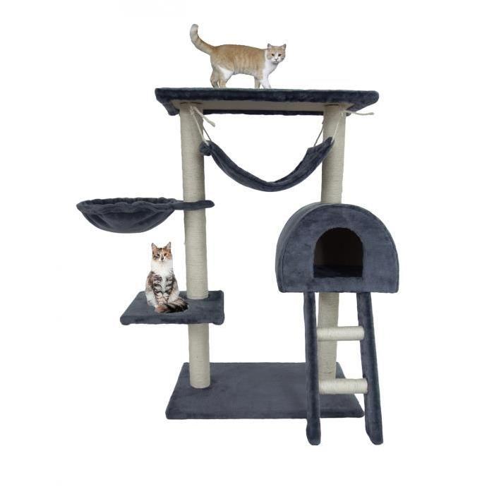 arbre à chat avec hamac