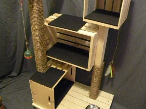 construire un arbre à chat diy