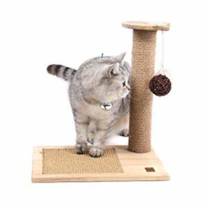 jouet suspendu arbre à chat