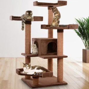 arbre à chat solide et robuste